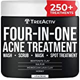 TreeActiv Four-in-One Acne Treatment   Sulfur Face Wash   Bentonite Clay Cystic Acne Spot...